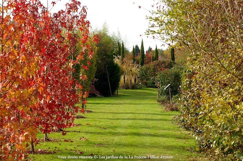 Chemin vers le jardin contemporain for Le jardin contemporain