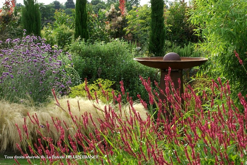 Cheveux d ange et persicaria au jardin contemporain for Photo jardin contemporain