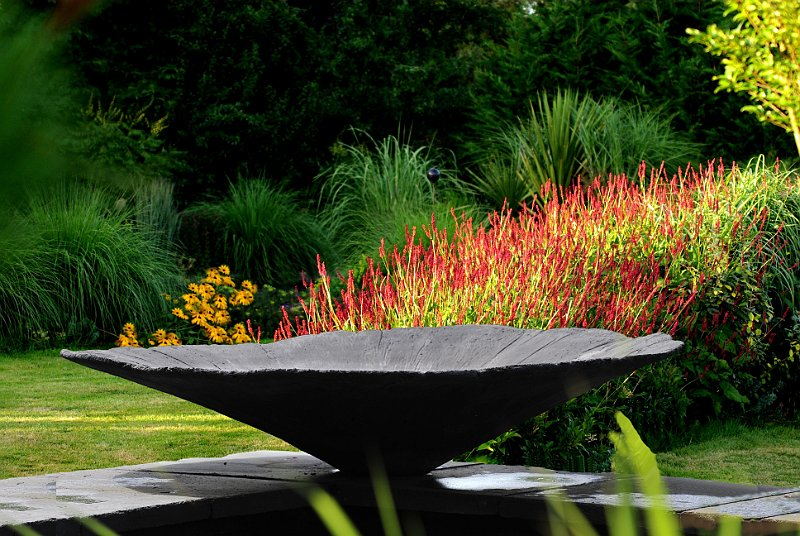 Vasque au jardin contemporain et persicaria for Photo jardin contemporain