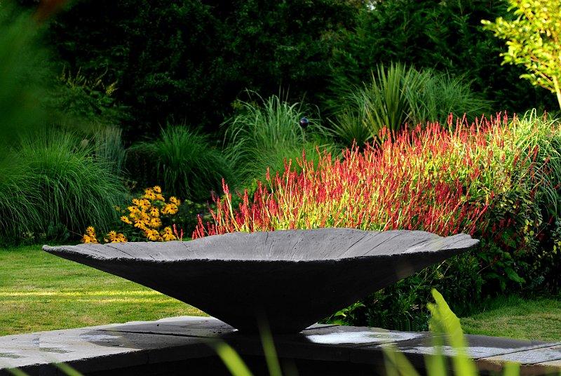 vasque au jardin contemporain et persicaria