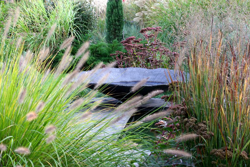 Vasque au jardin contemporain for Photo jardin contemporain